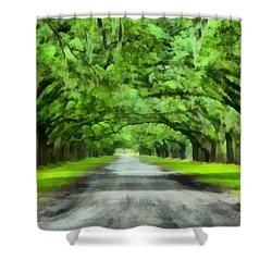 Wormsloe Plantation Shower Curtain