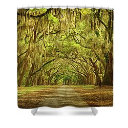 Wormsloe Plantation Oaks Shower Curtain