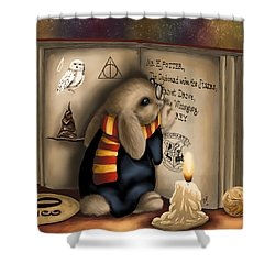 Wow I'm Harry Potter Shower Curtain