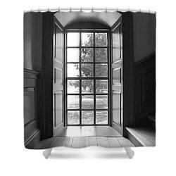 Wren Building Window Shower Curtain