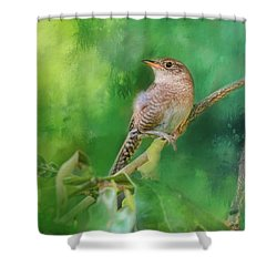 Wren In The Garden Bird Art Shower Curtain