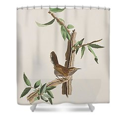 Wren Shower Curtain