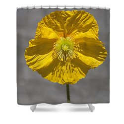 Wrinkled Beauty Shower Curtain