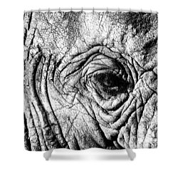 Wrinkled Eye Shower Curtain