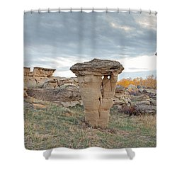 Shower Curtain featuring the photograph Writing On Stone Park by Fran Riley