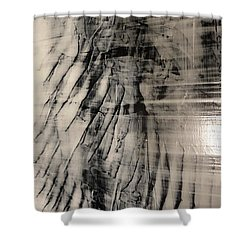 Wws II Shower Curtain
