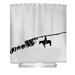 Wyoming: Cattle, C1920 Shower Curtain