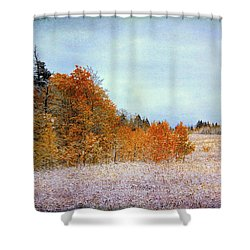 Wyoming Splendor Shower Curtain by Susan Crossman Buscho