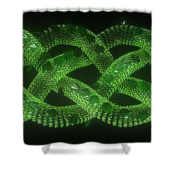 Wyrm - The Celtic Serpent Shower Curtain