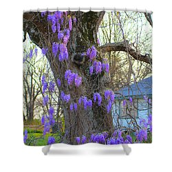Wysteria Tree Shower Curtain