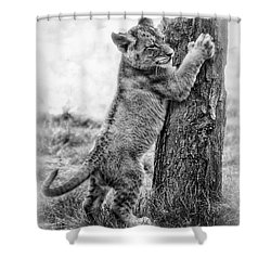 Shower Curtain featuring the mixed media X Marks The Spot by Elaine Malott