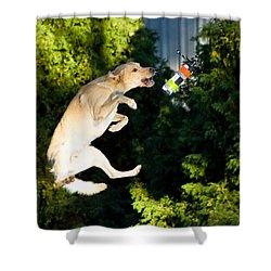 Shower Curtain featuring the photograph X-treme Airdogs 4 by Tyra OBryant