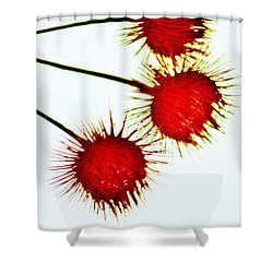 Xanthium Propaganda Shower Curtain