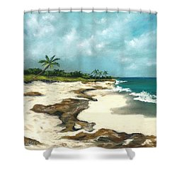 Shower Curtain featuring the painting Xcaret - Mexico - Beach by Anastasiya Malakhova