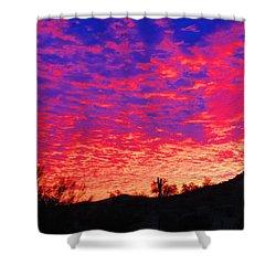 Y Cactus Sunset 1 Shower Curtain