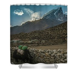 Shower Curtain featuring the photograph Yaks Moving Through Dingboche by Mike Reid