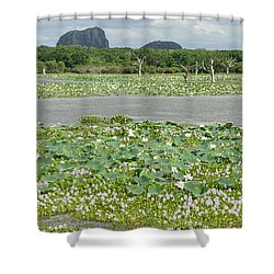 Yala National Park Shower Curtain by Christian Zesewitz