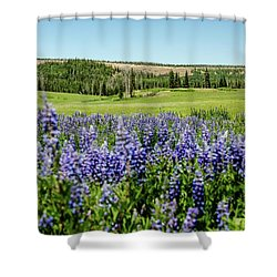 Yard Full Of Wildflowers Shower Curtain
