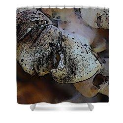Yard Mushrooms Shower Curtain