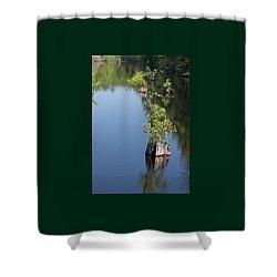 Yawkey Wildlife Refuge - Cat Island Shower Curtain by Suzanne Gaff