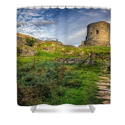 Ye Olde Path  Shower Curtain by Adrian Evans