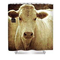 Shower Curtain featuring the photograph Yeg 3110 by Trish Mistric