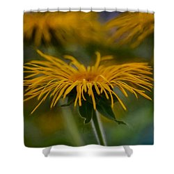 Shower Curtain featuring the photograph Yellow 1 by Leif Sohlman