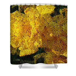 Yellow Abstraction Shower Curtain by Jean Bernard Roussilhe