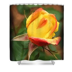 Yellow And Orange Rosebud Shower Curtain by Smilin Eyes  Treasures