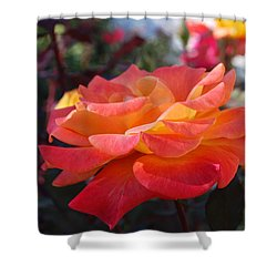 Yellow And Pink Rose Shower Curtain