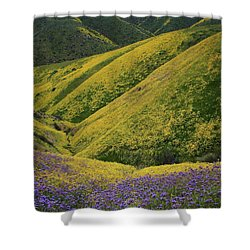 Yellow And Purple Wildlflowers Adourn The Temblor Range At Carrizo Plain National Monument Shower Curtain