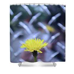 Yellow And Silver Shower Curtain