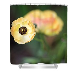 Yellow Anemone Center  Shower Curtain