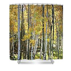 Yellow Aspens Shower Curtain