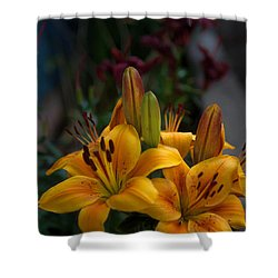 Yellow Beauties Shower Curtain by Cherie Duran