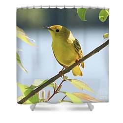 Yellow Beauty Shower Curtain