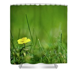 Shower Curtain featuring the photograph Yellow Beauty by Kennerth and Birgitta Kullman