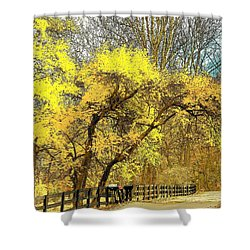 Yellow Bend Shower Curtain