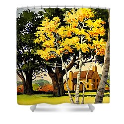 Yellow Birches Shower Curtain