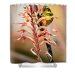 Shower Curtain featuring the photograph Yellow Bird Hi by AJ Schibig