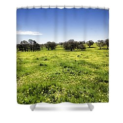 Shower Curtain featuring the photograph Yellow Blanket by Douglas Barnard