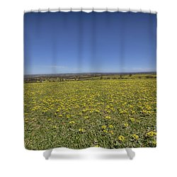 Shower Curtain featuring the photograph Yellow Blanket II by Douglas Barnard
