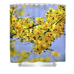 Yellow Blossoms Shower Curtain