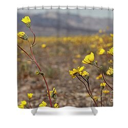 Shower Curtain featuring the photograph Yellow Breeze by Suzanne Oesterling
