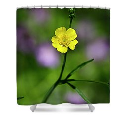 Yellow Buttercup Shower Curtain by Christina Rollo
