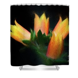 Yellow Cactus Flowers Shower Curtain by Darleen Stry