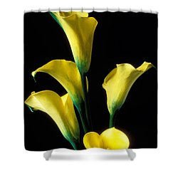 Genial Yellow Calla Lilies Shower Curtain