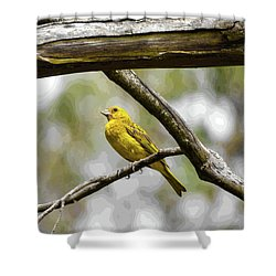 Yellow Canary Shower Curtain