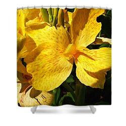 Yellow Canna Lily Shower Curtain by Shawna Rowe
