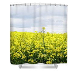 Shower Curtain featuring the photograph Yellow Canopies by Ivy Ho
